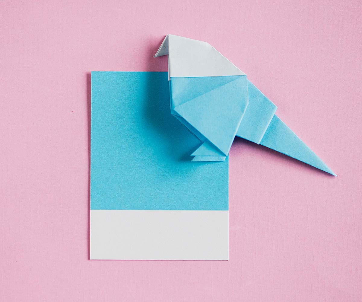Gratitud y Productividad: Enviar tarjetas de agradecimiento